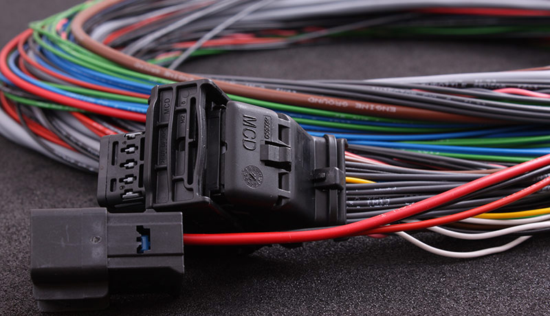 Main harness for MaxxECU V1 / RACE / PRO