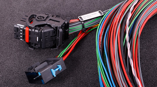 Flying lead harness for MaxxECU SPORT